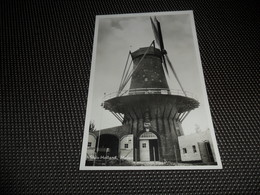 Nederland ( 700 )   Zeeland  : Sluis  L' Ecluse  Molen  Moulin - Sluis