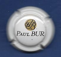 MOUSSEUX PAUL BUR - Mousseux