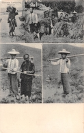 ¤¤   -   CHINE  -  Chinese Labouring Woman  -  Chinese Farmers  -  Agriculture   -   ¤¤ - Chine