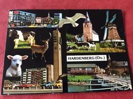 Nederland Hardenberg 1981 - Nederland