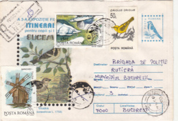 76795- HOUSE SPARROW, BIRDS, REGISTERED COVER STATIONERY, WINDMILL, FISH, BIRD STAMP, 1996, ROMANIA - Moineaux