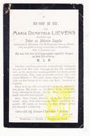 DP Maria D. Lievens / Supplie Supply ° Beveren Roeselare 1889 † Rumbeke Roeselare 1917 / Rollegem-Kapelle / Zilverberg - Devotion Images