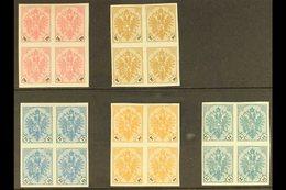 1901 IMPERF PROOF BLOCKS. Black Numeral Set, Mi 24/28, SG 177/82, Imperf Mint Blocks Of 4. Lovely (5 Blocks = 20 Stamps) - Bosnia And Herzegovina