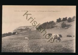 Le Salève - Les Pâturages De La Grand'Gorge [AA36 3.734 - France