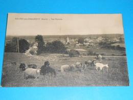 """25 ) Villers-sous-chalamont - Vue Générale  """" Gardienne De Moutons Et De Chévres """" - Annèe  - EDIT : - Autres Communes"""