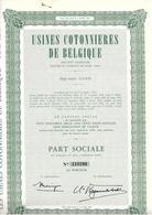 Usines Cottonières De Belgique - 1956 - Textiles