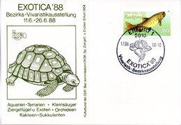 "(DDR-B3) DDR Sonderkarte ""Bezirks-Vivaristikausstellung EXOTICA'88"", EF Mi 3096, SSt.17.6.1988 ERFURT 1 - [6] République Démocratique"