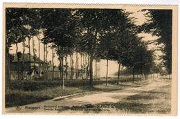 Nieuwpoort, Nieuport, Boulevard Exterieur , Tour Des Templiers (pk55321) - Nieuwpoort