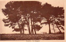 ROGNAC ( B-du-R )  Carte En Achat Immédiat - Francia