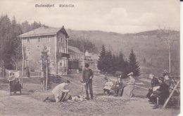 Bollendorf- Waldvilla - Other