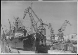 NAVE ATHENIC IN PORTO - GRU - FORMATO 14,50X10 - ORIGINALE D'EPOCA FINE ANNI '40 - Barche