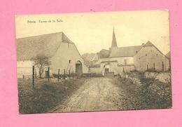 C.P. Strée =  Ferme  De La Salle - Beaumont