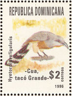 République Dominicaine. Dominican Republic.Bay-breasted Cuckoo ( Hyetornis Rufigularis) - Coucous, Touracos