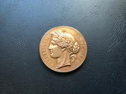 Medaille CERES - Exposition Universelle PARIS 1889 - Bronze - Professionnels / De Société