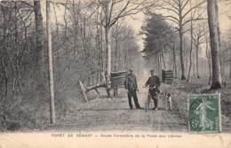 91 - Essonne / Forêt De Sénart - 911829 - Route Forestière De La Poste Aux Lièvres - Défaut - France