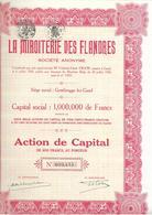 La Miroiterie Des Flandres - Rood - Actions & Titres