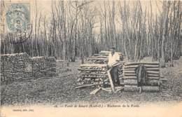 91 - Essonne / Forêt De Sénart - 911851 - Bûcheron De La Forêt - France
