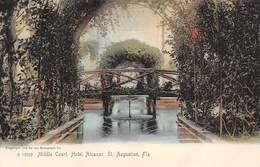 A-19-2509 : SAINT AUGUSTINE.  MIDDLE COURT. HOTEL ALCAZAR. - St Augustine