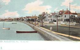 A-19-2521 : SAINT AUGUSTINE.  THE SEA WALL. - St Augustine