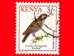 KENIA - Usato - 1993 - Uccelli - Indicatore Golanera - Birds - Indicator Indicator - 3/- - Kenia (1963-...)