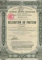 CIE IMPERIALE DES CHEMINS DE FER ETHIOPIENS  -DELEGATION AU PORTEUR - ANNEE 1910 - Chemin De Fer & Tramway