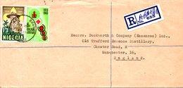 NIGERIA. N°167-8 De 1965 Enveloppe Ayant Circulé. Scoutisme. - Cartas
