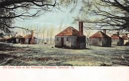 A-19-2559 :  SAVANNAH. OLD SLAVE HUTS AT THE HERMITAGE PLANTATION. - Savannah