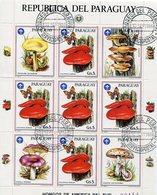 HONGOS MUSHROOMS WITH SCOUT EMBLEM - PARAGUAY YVERT & TELLIER 2213 AÑO 1986 OBLITERES BLOCK FEUILLET - LILHU - Paraguay