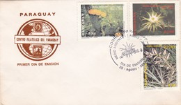 MEDIO AMBIENTE, CAMBIO CLIMATICO-FDC 1997 PARAGUAY - BLEUP - Protección Del Medio Ambiente Y Del Clima