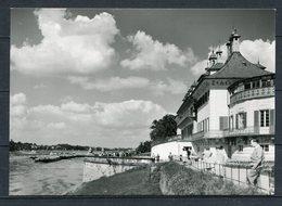Dresden / Schloß Pillnitz An Der Elbe - S/w - N. Gel. - DDR - J 43/75 - Foto-Hanich, 8017 Dresden - Dresden