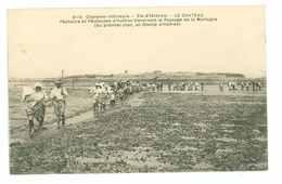 17 -- ILE D'OLERON - CHATEAU - Pêcheurs Et Pêcheuses D'huitres..... - Ile D'Oléron