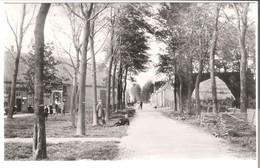 Dordrecht - Straatweg Willemsdorp Omstreeks -  1905 (AK3268) - Dordrecht