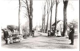 Dordrecht - Dubbelsteynlaan Bij De Rechte Zandweg, Omstreeks -  1905 (AK3293) - Dordrecht