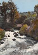 LES SALLES Fontaine L Eveque Source Cauclusienne A Proximite Des Celebres Gorges 31(scan Recto-verso) MA1006 - France
