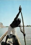 Afrique Africa Piroguier Canoe Driver - Afrique
