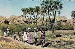 Afrique Africa  Sur Le Chemin De La Fontaine Along Way Of Fountain - Afrique