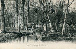 LES AUBIERS_BRION(ARBRE) - France