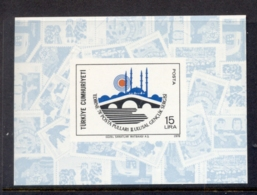 Turkey 1978 Youth Philatelic Ex, Mosque & Bridge MS MUH - Unused Stamps