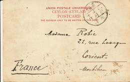 CHIM VAN ZAO - 1909 , Postcard From Ceylon Used From  China / Viet Nam ? To Lorient / France - China