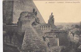 CP , 80 , AMIENS , La Cathédrale , Chimères Et Gargouilles - Amiens