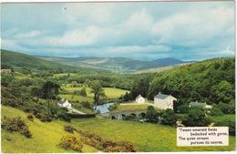 Scenic Ireland - 'Tween Emerald Fields Bedecked With Gorse, The Quiet Stream Pursues Its Course'  - (1967) - (N.Ireland) - Antrim / Belfast
