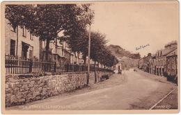 Llanfyllin - High Street - (R.A. Bryan, Printer & Stationer, Llanfyllin) - (Powys, Wales) - Breconshire