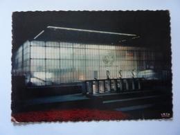 """Cartolina  Viaggiata """"EXPOSITION UNIVERSELLE DE BRUXELLES Pavillion De L' U.R.S.S. Vue Nocturne"""" 1958 - Expositions Universelles"""