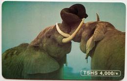 Elephant  4,000 Shillings - Tanzania