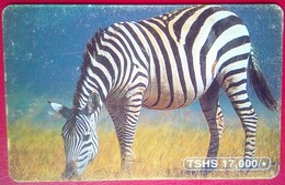 Zebra 17,000 Shillings - Tanzania