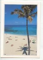 Ile La Réunion : Boucan-Canot (couleurs De La Réunion N°6064 Hoa-qui) - Autres