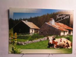 Ecrite à Morteau - Vache - Ferme - Autres Communes