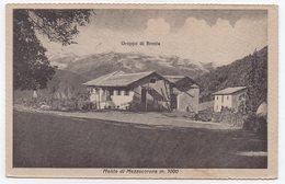 Monte Di Mezzocorona (mt 1000) - Gruppo Del Brenta - Trento