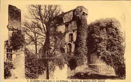 44 - CLISSON  - Le Château - Ruines Du Donjon - - Clisson