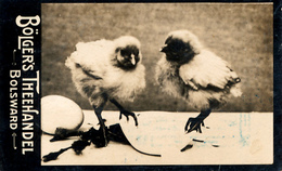 Early Advertisement Card,  2 Chicken, Bolgers Theehandel, Bolsward, Real Photo - Reclame